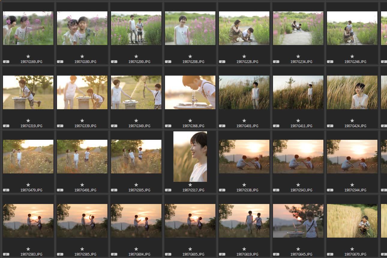 全撮影写真(300枚)の画像データ(ダウンロードまたはデータメディア収納)